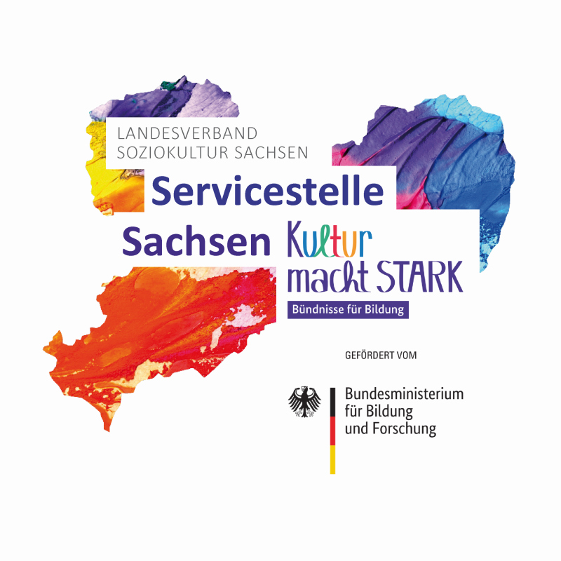 Logo KmS-Sachsen small
